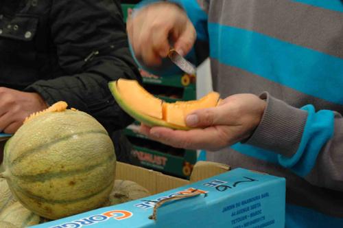 Melon degustation vue 1