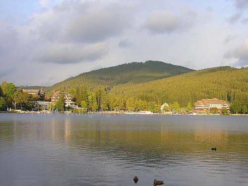 Titisee deux vue 1
