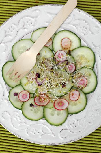 Salade concombre vinaigrette japonaise vue 1