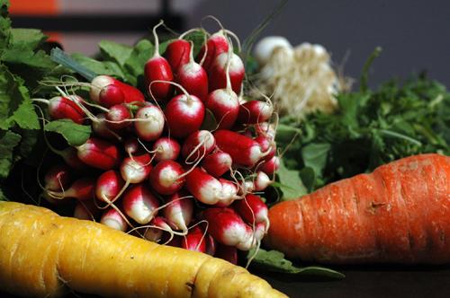 Legumes joel thiebault vue 1