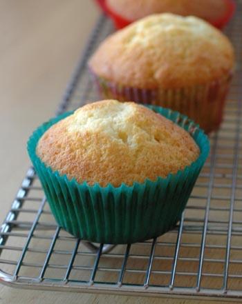Cupcakes nature deux vue 1
