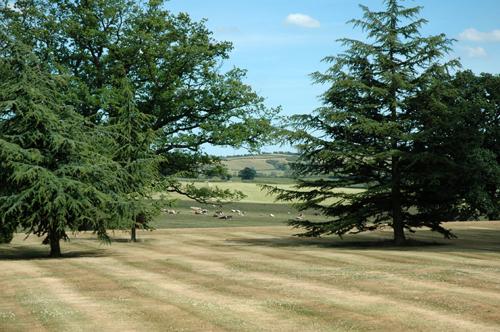 Quenby hall parc deux vue 1