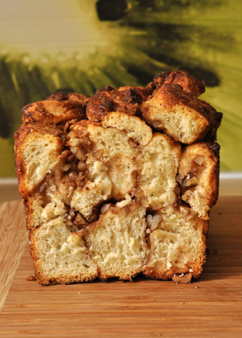 Monkeybread coupe vue 1