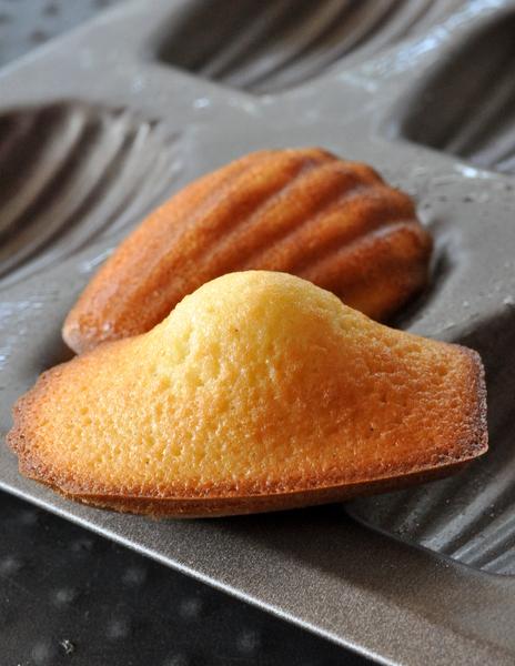 Recette facile de madeleines à la vanille de Philippe Conticini
