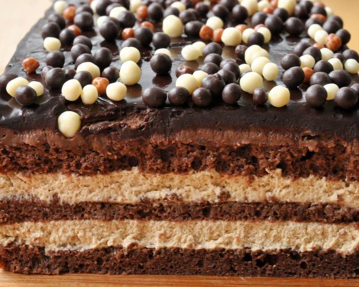 Gateau opera encyclopedie chocolat valrhona