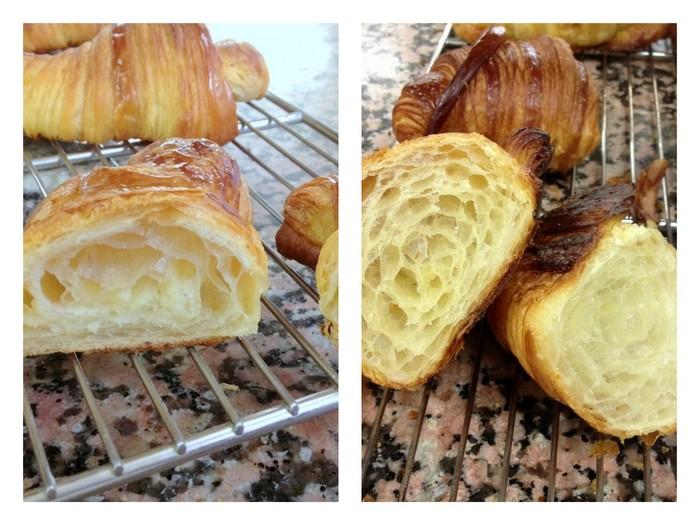 Deux types alveoles sur croissants