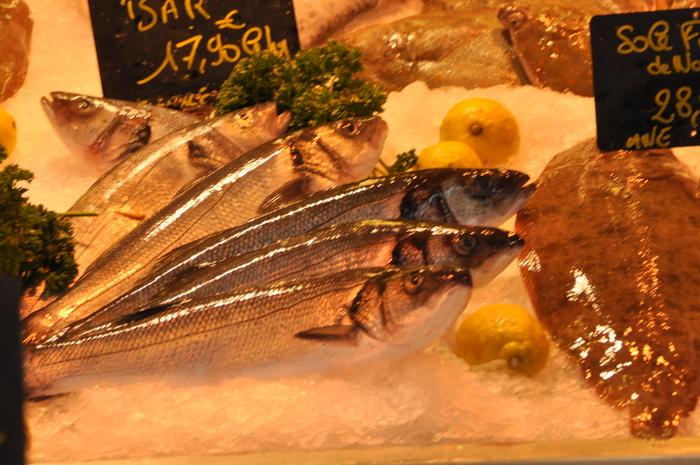 Bar marche poissons trouville