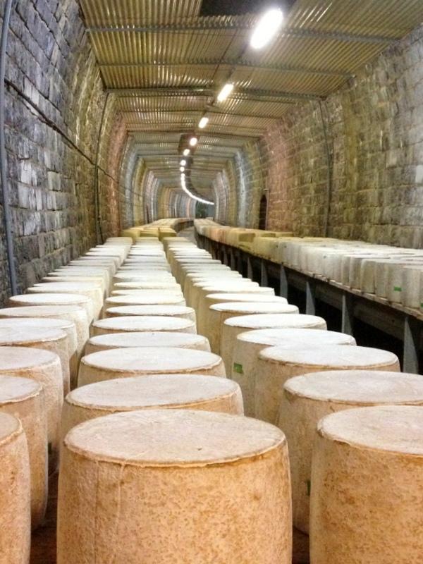 Cave affinage cantal aop tunnel de saint poncy