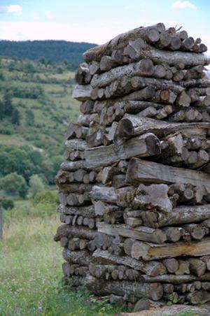 Pile de bois en bourgogne