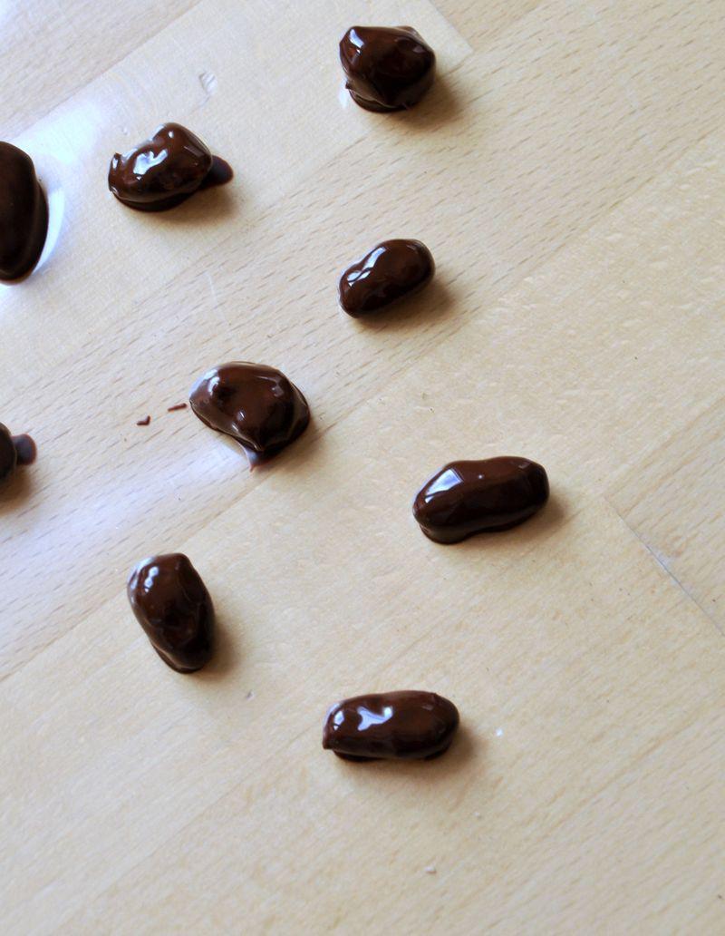 Amandes chocolat 008-001