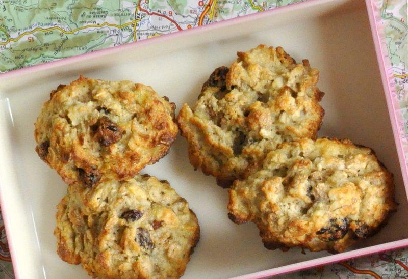 Biscuits sans sucres ajouter a emporter en voyage