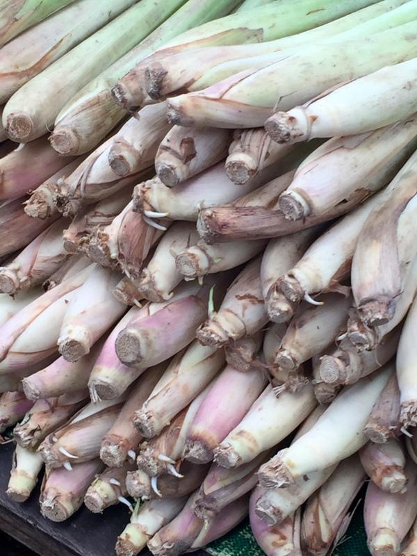 Citronnelle marché bangkok