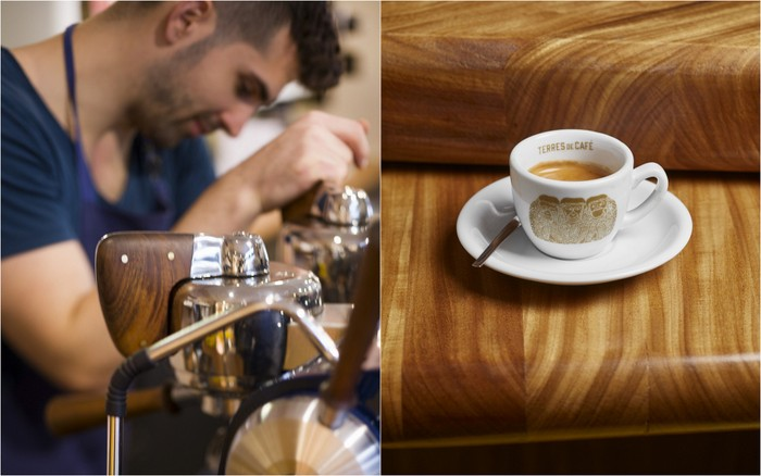 Culture cafe christophe servell terres de cafe