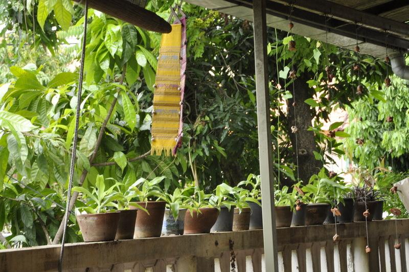 A lot of thai ecole de cuisine thai chiang mai (2)