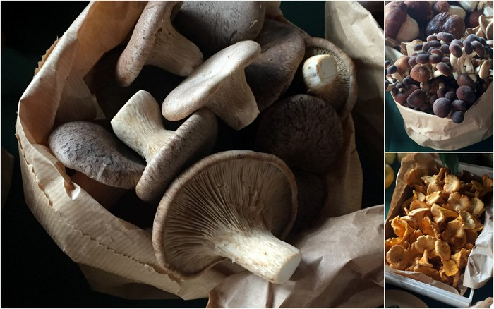 Champignons italiens