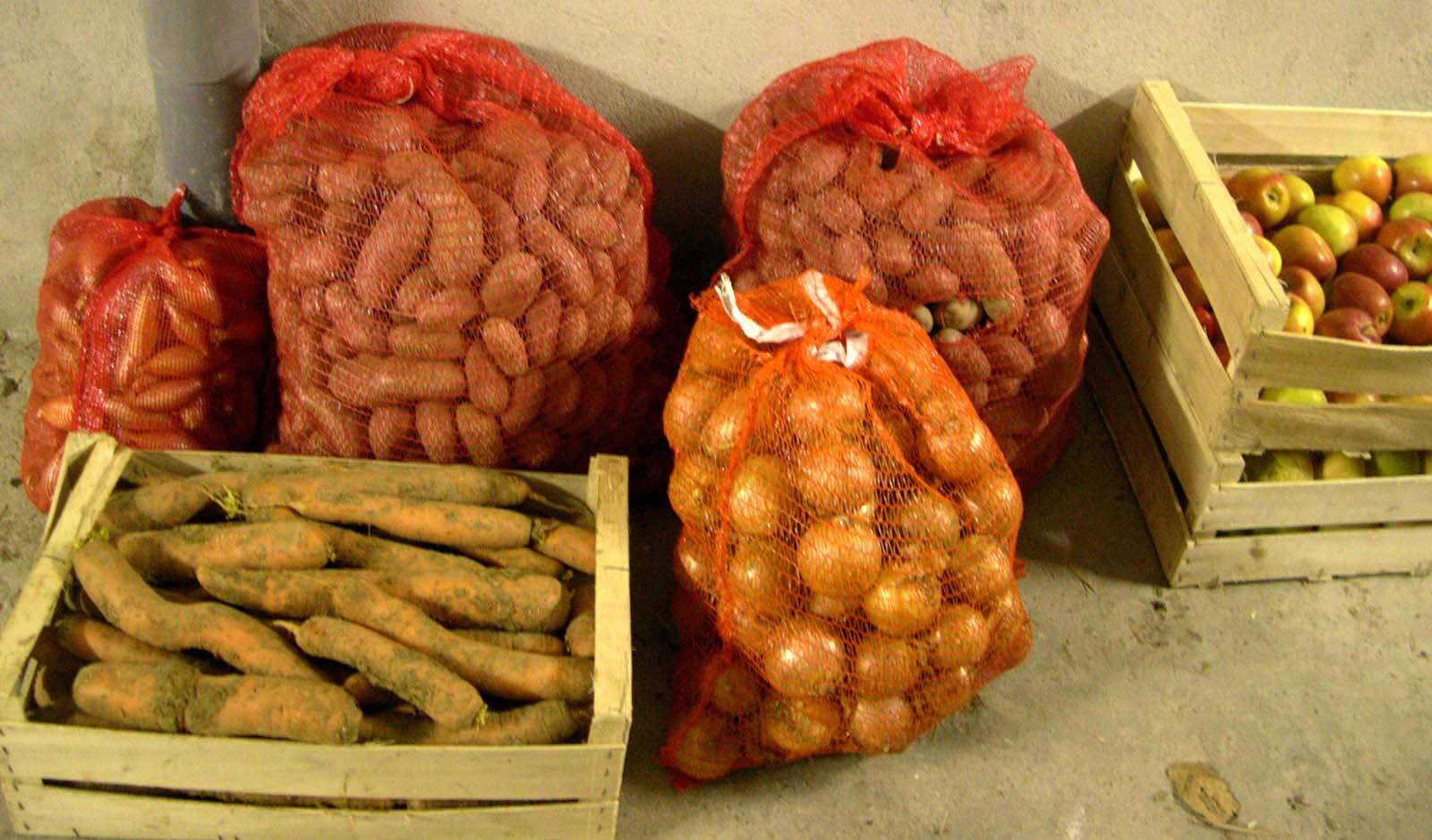 Prix Caisse A Pomme c'est moi qui l'ai fait !: 50 kg de pommes de terre