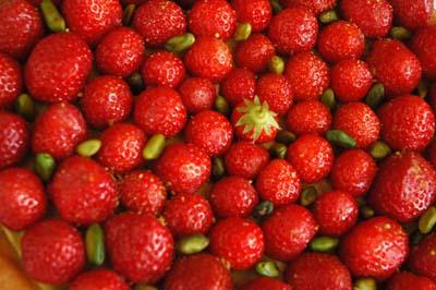 Tarte_fraises_pistache_cinq_vue_1