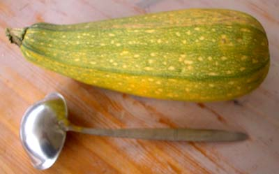 Courge_geante_1