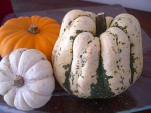 Courges_vue_2