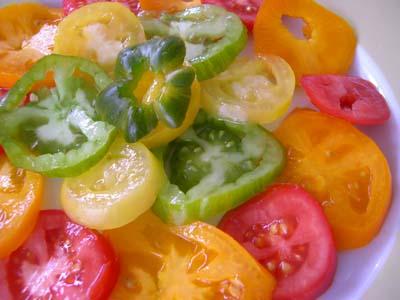 Salade_tomates_plein_champ_vue_1