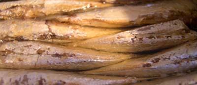 Sardines_en_boite_vue_1