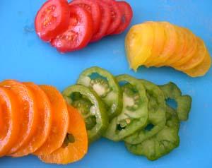 Tomates_plein_champ_coupees_vue_1