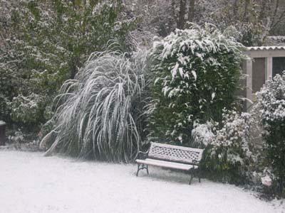 Vue_hiver_vue_1
