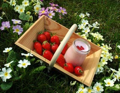 Yaourt_a_la_fraise_vue_1